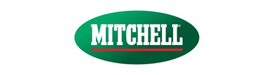 mitchellfishing
